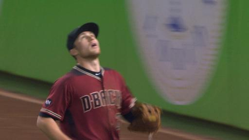 Brandon Drury foul-ball catch