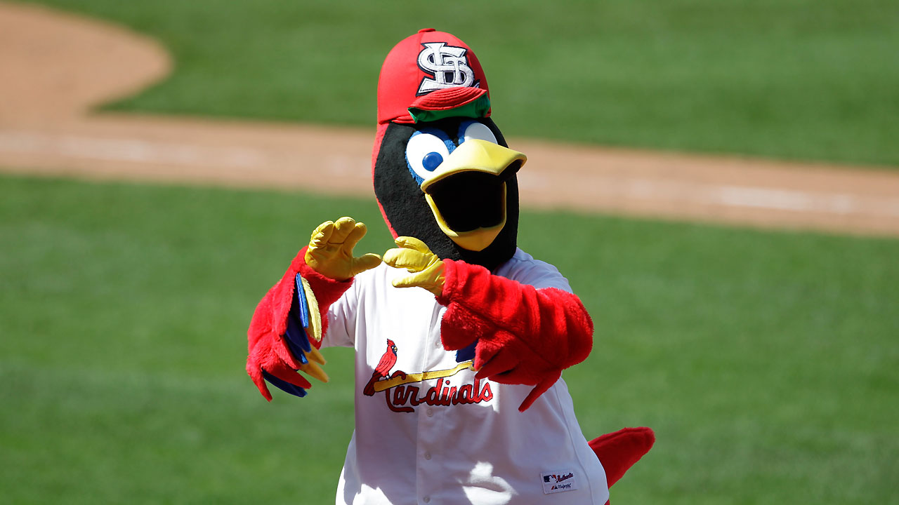 St Louis Cardinals To Release New Instagram Video Series
