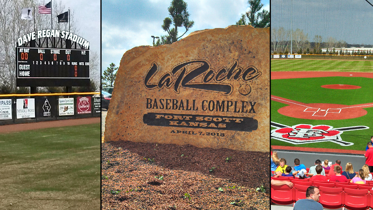 Image result for adam laroche baseball complex fans in dugout